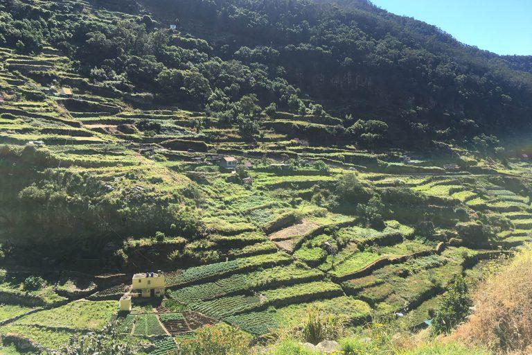 Wanderungen Levada Maroços