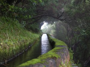 Levada do Rabaçal