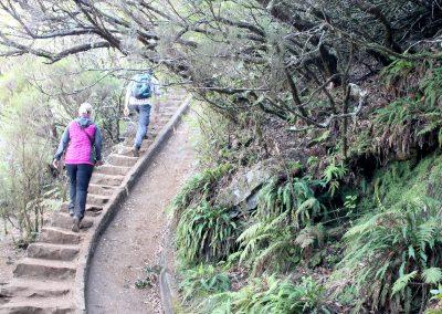 8 – Levada Madeira Lakes 5