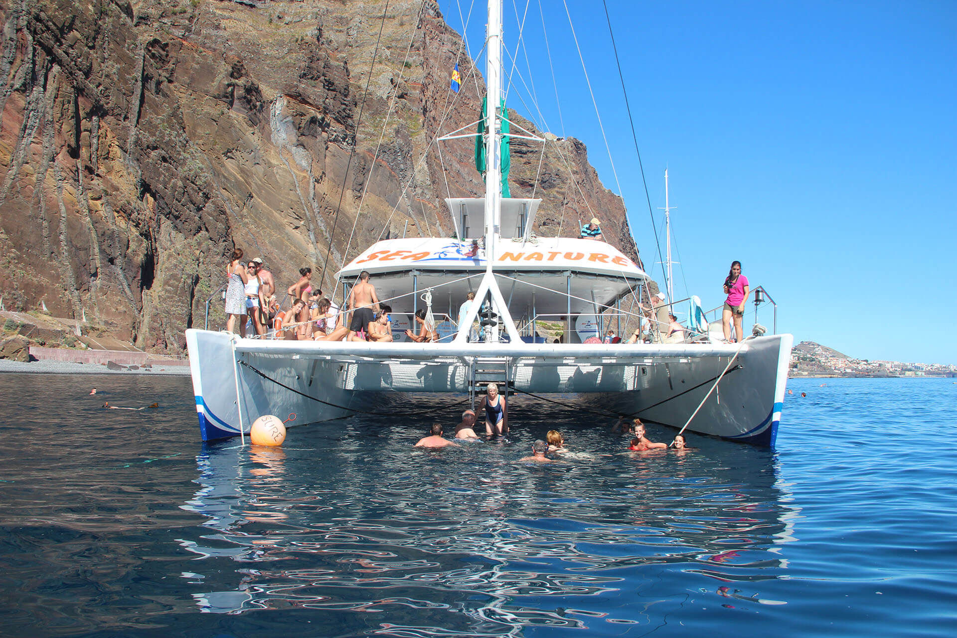 Dolphin and Whale Watching by VMT Catamaran 6