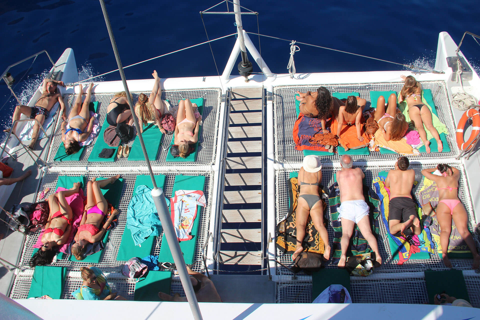 Dolphin and Whale Watching by VMT Catamaran 8