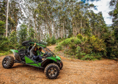 4x4 Buggy - Trail Ocote