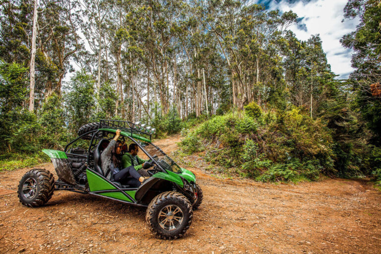 4x4 Buggy - Trail Ocotea