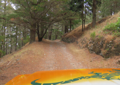 4x4 Jeep Safari Nuns & Valleys – Curral das Freiras - Pico Areeiro 10