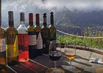 Excursão Vinho Madeira com Almoço Vinícola 9