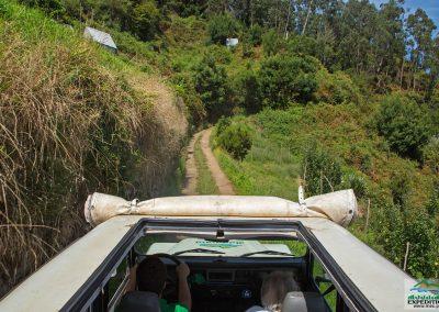 Expedição Combo - Jeep Safari + Passeio de Levada 14
