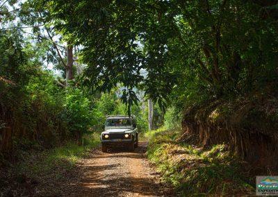 Expedição Combo - Jeep Safari + Passeio de Levada 10